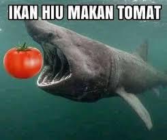 Odading mang oleh... - Meme Pencurry Indonesia | Facebook