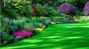 beautiful flower garden images red