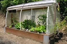 how to build a raised bed greenhouse
