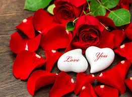 حب ورود رومانسية للاهداء