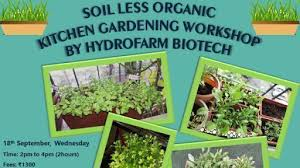 soil less organic kitchen gardening