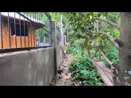 Final Cost Of Our 1 600 Square Feet Concrete Fence In Kidapawan Philippines Youtube