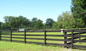 5 Best Horse Fence Options For Your Paddock Horsey Hooves