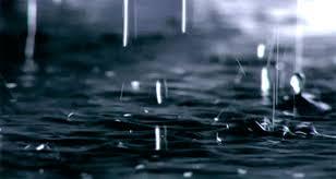 Defesa Civil registra 49 milímetros de chuva no bairro Velha ...