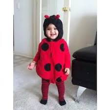 red and black ladybird costume rs 350