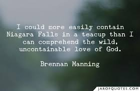 I could more easily contain Niagara Falls in a teacup than I can ...
