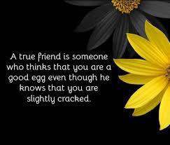 heartwarming true friends quotes quotereel