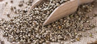 hemp seeds benefits nutrition uses