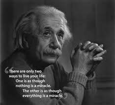 famous quotes from albert einstein carra lucia books