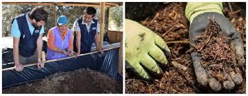 Lombrices, humus, abonos y lombricultura -