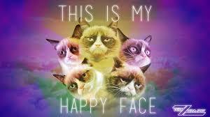 grumpy cat desktop wallpaper ur