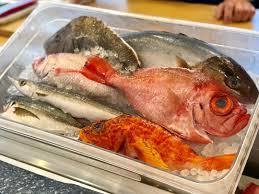 Tsukiji Fish Market in Katy ...