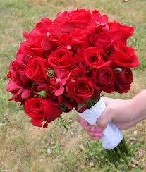 صور ورد حب الورد لغة العاشقين صباح الورد