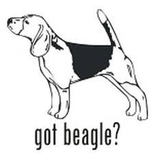 Got Beagle Hound Dog Decal Vinyl Sticker
