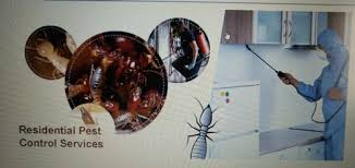 Residential Pest Control & Pest Control Services For Cockroach from New  Delhi