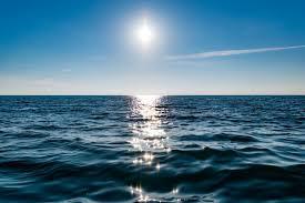 Los océanos pagan un precio muy alto - Ambientum