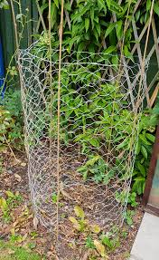How To Make Tomato Cages With Chicken Wire Wire Fence