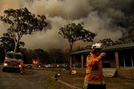 Australia fires: news and updates - Vox
