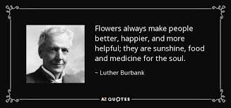 top flower quotes of a z quotes