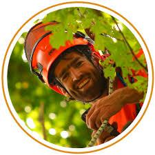 GROW Tree Care Team | ISA Arborists serving the Comox Valley