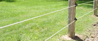 Electric Wire Fencing With Multi Treadin Posts