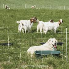 Electronet 9 35 12 Electric Netting Electric Fence Electricity Dogs