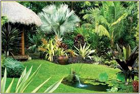 tropical garden design uk jajlindulu