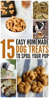 15 diy dog treats to per your pooch