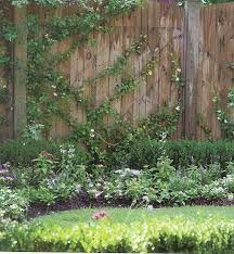Pin By Amy Depriest On Favorite Places Spaces Fence Landscaping Vine Fence Vine Trellis