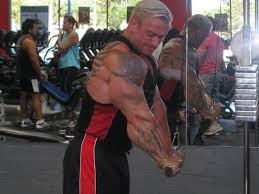 rules of arms workout by lee priest