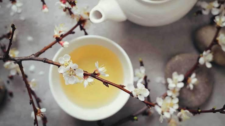 """Image result for white tea"""""""