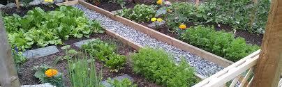 seed seedling spacer tool grow