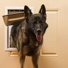 pet door magnetic flap gate w lock out