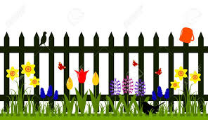Vector Picket Fence With Spring Flowers Isolated On White Background Picket Fence Garden White Picket Fence Spring Flowers
