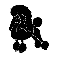 10 4 12 7cm Poodle Creative Cartoon Window Decal Cute Pet Dog Tail Decorative Stickers Car Accessories C6 0711 Accessories Welding Accessories Motorcycleaccessories Party Aliexpress
