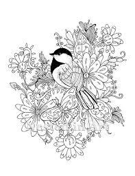 Volwassen Kleurplaat Chickadee Met Vlinder En Bloemen Etsy