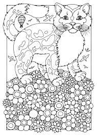 Kleurplaat Kat Afb 15823 Malvorlagen Tiere Malbuch Vorlagen