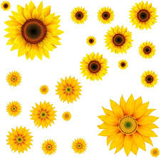 Amazon Com 22pcs Diy Sunflower Wall Sticker 3d Yellow Flower Wall Decals Peel And Stick Removable Wall Art Decor Nursery Daisy Floral Stickers For Kids Baby Living Room Decoration Kitchen Dining