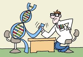 چرا مشاوره ژنتیک قبل از ازدواج مهم است