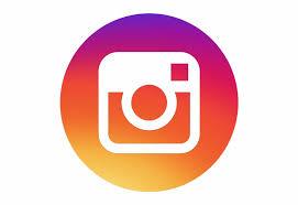 500 Instagram Logo Icon Gif Transparent #784915 - PNG Images - PNGio