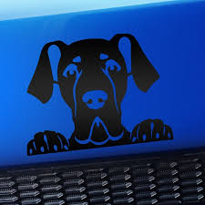 Peeking Great Dane Vinyl Decal Choose Color Matte Black Walmart Com Walmart Com