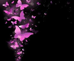 pink and black erfly wallpaper