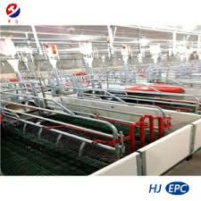 China Farrowing Crate For Sows Pvc Fence Feeders Slated Floor For Farrowing House China Pig Cage Pig Stall