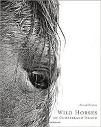 coffee table book wild horses of