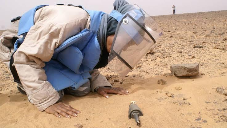 """Resultado de imagen de mujeres saharauis que limpian el sahara"""""""