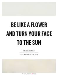 be like a flower and turn your face to the sun picture quotes