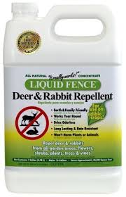 Liquid Fence 111 Deer And Rabbit Repellent 1 Gallon Concentrate By Liquid Fence 92 25 Proven Rabbit Repellent Rabbit Resistant Plants Deer Resistant Plants