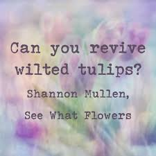 author s picks top quotes from my novel see what flowers