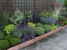 evergreen plants and garden borders