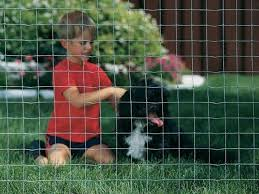 Galvanised Wire Mesh Fencing 5ft 1 52m X 30m Roll 2 50mm Mesh Dog Fencing